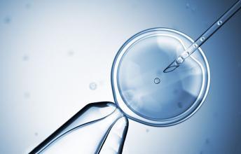嘉圆国际:胚胎移植成功就代表怀孕了吗?