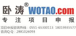 安徽省中国声谷项目申报条件